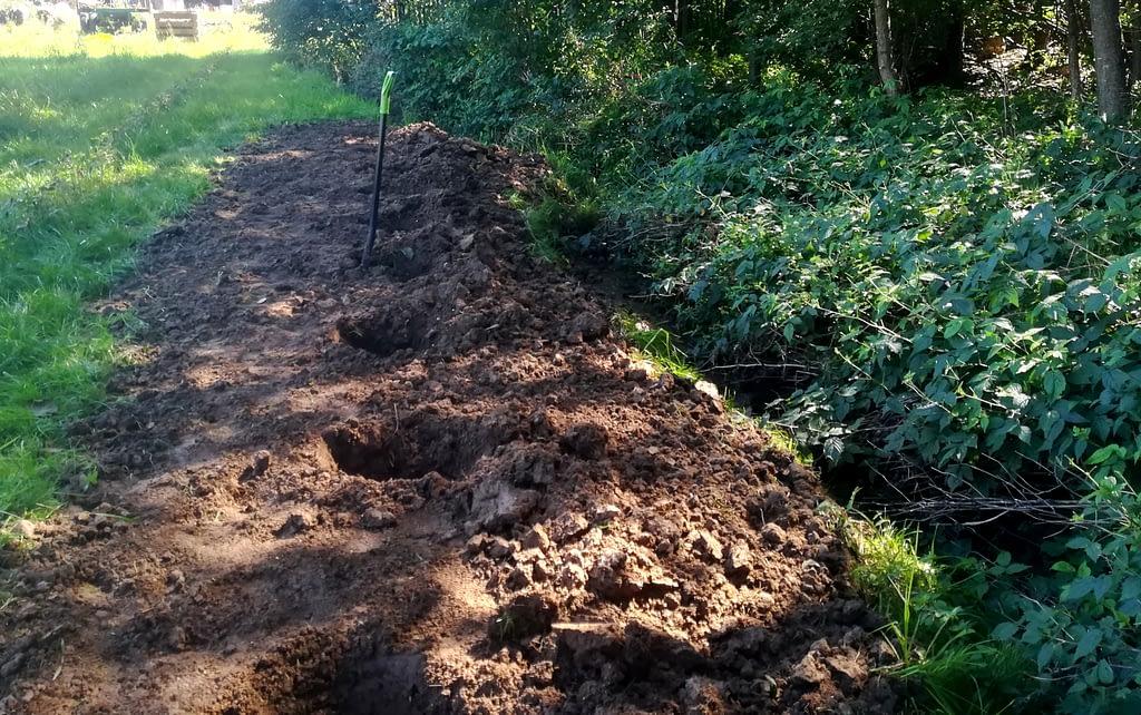 Przygotowanie gleby pod rabarbar